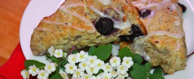 Blueberry Honey Scone Recipe